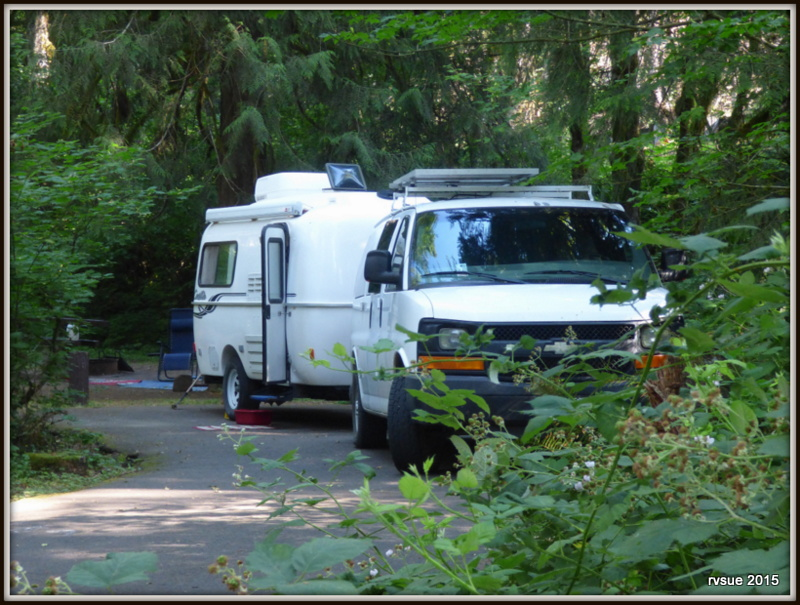 camp   clackamas river  mt hood national forest rvsue   canine crew
