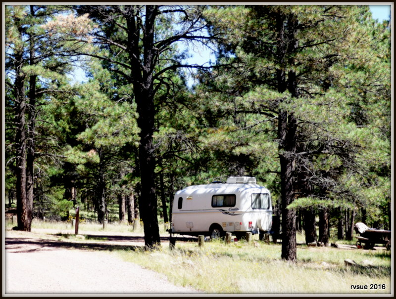 Luna Lake Campground Apache Sitgreaves National Forest